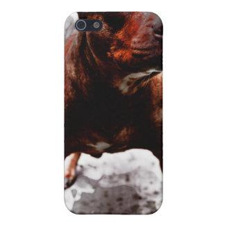 Matón Kali del hoyo iPhone 5 Carcasa