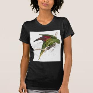 Maton's Parrakeet by Edward Lear T-Shirt
