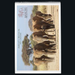 "Matriarchs Calendar 2015<br><div class=""desc"">This year we decided to focus on our famous Amboseli matriarchs. We have documented their lives for the last 43 years and know these families better then any human on earth! Support their protection by purchasing this Calendar for 2015.</div>"