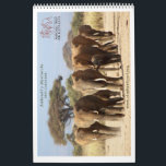 """Matriarchs Calendar 2015<br><div class=""""desc"""">This year we decided to focus on our famous Amboseli matriarchs. We have documented their lives for the last 43 years and know these families better then any human on earth! Support their protection by purchasing this Calendar for 2015.</div>"""