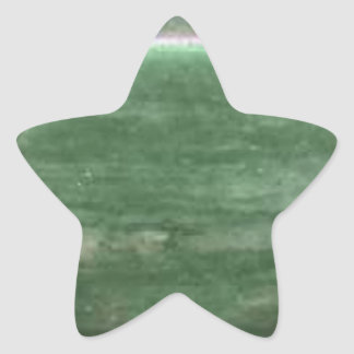 Matriz de la piedra preciosa de la ágata de musgo pegatina en forma de estrella