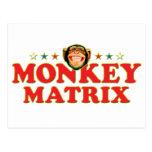 Matriz enrrollada del mono tarjetas postales