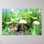 Matroshka in a Mushroom Patch Posters