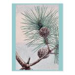 Matsu pine / Megata Ukiyo-e. Post Cards
