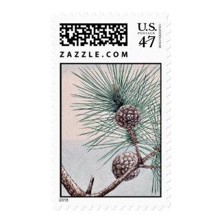 Matsu pine / Megata Ukiyo-e. Postage Stamp