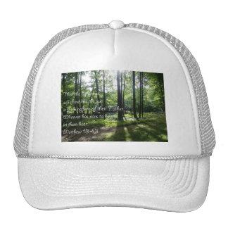 Matthew 13:43 hats