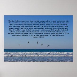 Matthew 6:25- 31 Poster print