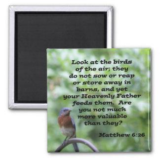 Matthew 6:26 2 inch square magnet