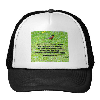 Matthew 6:26 mesh hats
