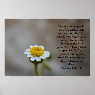 Matthew 6:27- 29 Poster print