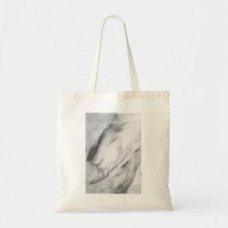 Matthias Grünewald: Forearm Study Bags