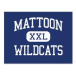 Mattoon Wildcats Middle Mattoon Illinois Post Card