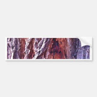 Mature Redwood gum tree bark in summer Car Bumper Sticker
