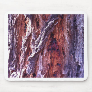 Mature Redwood gum tree bark in summer Mouse Pad
