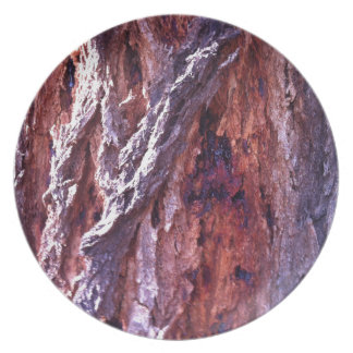 Mature Redwood gum tree bark in summer Plate