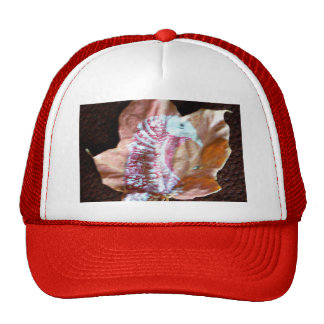 Mature Tom Turkey Mesh Hat