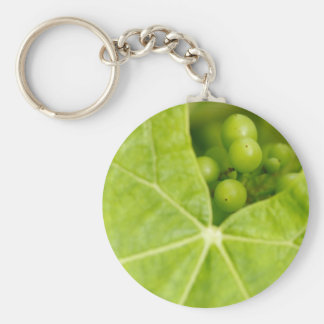 Maturing grapes key chains