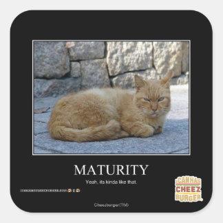 Maturity Square Sticker