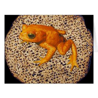 Matzah & Tzfardea (Frog) Card