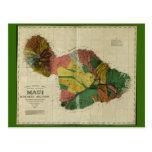 Maui, 1885, mapa de Hawaii del vintage Postal