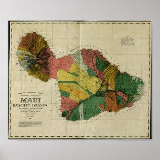 Maui, 1885, mapa de Hawaii del vintage Póster