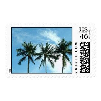 Maui 438 postage