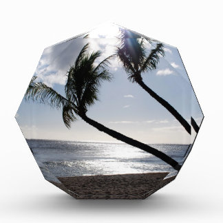 Maui Beach Award