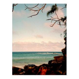 """Maui black rock beach"" collection Postcard"