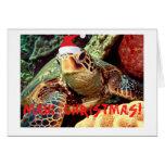 """MAUI CHRISTMAS""  SEA TURTLE WITH CHRISTMAS HAT CARDS"