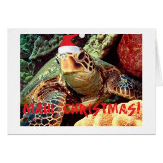 MAUI CHRISTMAS SEA TURTLE WITH CHRISTMAS HAT CARDS