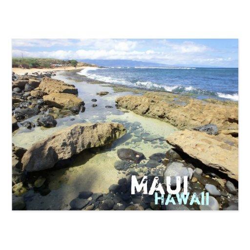 Maui Hawaii beach scene postcard