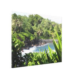 Maui, Hawaii Beaches Canvas Print