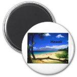 Maui Hawaii Kihei Beach (St.K.) Refrigerator Magnets