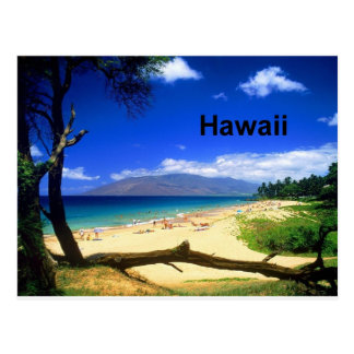 Maui Hawaii Kihei Beach (St.K.) Postcard