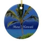 maui, hawaii, beach, ocean, sky, palm, tree, blue,