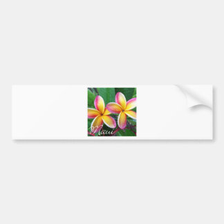 Maui Hawaii Plumeria Flowers Bumper Sticker