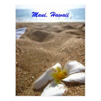 Maui, Hawaii Postcard