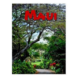 Maui Hawaii Postales