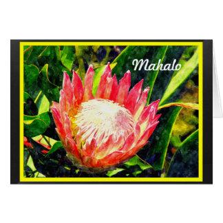 Maui Hawaii Tropical King Protea Flower, Mahalo Card