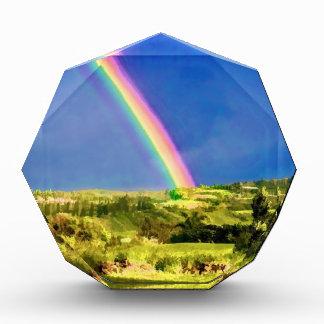 Maui Hi Beach Rainbow 2014 Award