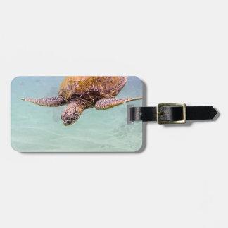 Maui Hi Beach Turtle 2014 Tags For Luggage