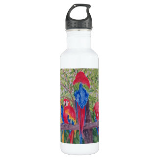 Maui Macaws Stainless Steel Water Bottle