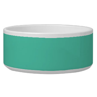 Maui Mint Green Seafoam Pet Food Bowl