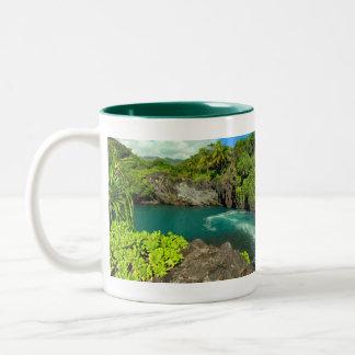 Maui no ka 'oi (it's the best) mug