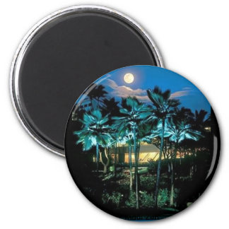 Maui Perfect Magnets