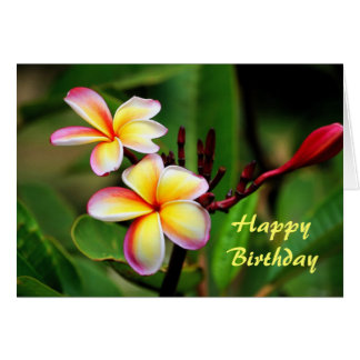 Maui Plumeria Flowers, Birthday Card