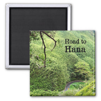 Maui Road to Hana Magnet