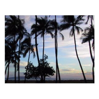 Maui Sunset 1 Postcard
