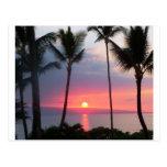 Maui Sunset!.JPG Postcard