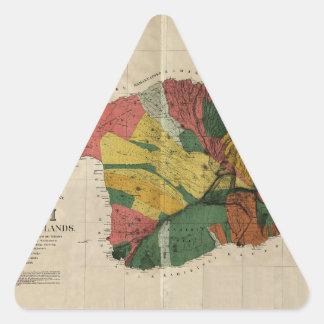 Maui - Vintage Antiquarian Hawaii Survey Map, 1885 Triangle Sticker